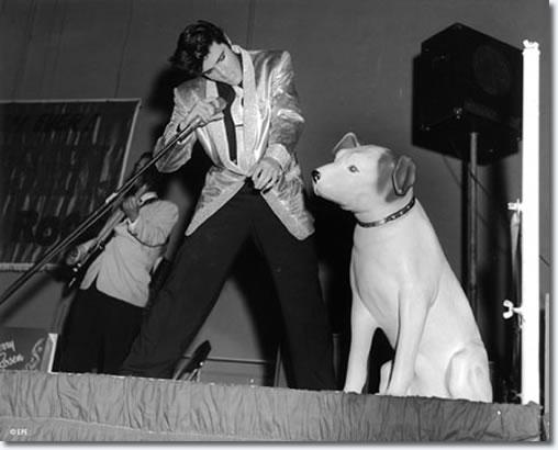 http://www.elvispresleymusic.com.au/pictures/img/elvis/50s/57/dog_1_508.jpg