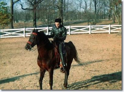 Elvis Presley's Ranch