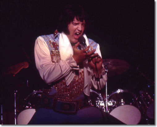 Elvis Presley : Veterans Memorial Coliseum, New Haven, Connecticut. 8:30 p.m July 30, 1976