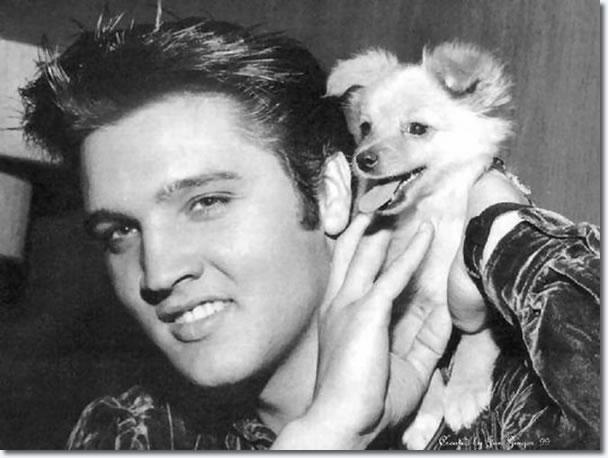Image result for Elvis Presley october 18