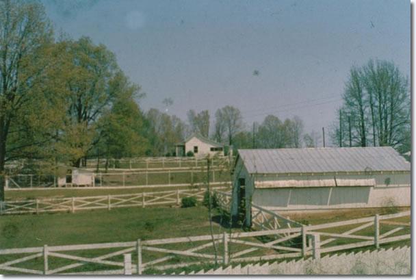 Graceland - April, 1962
